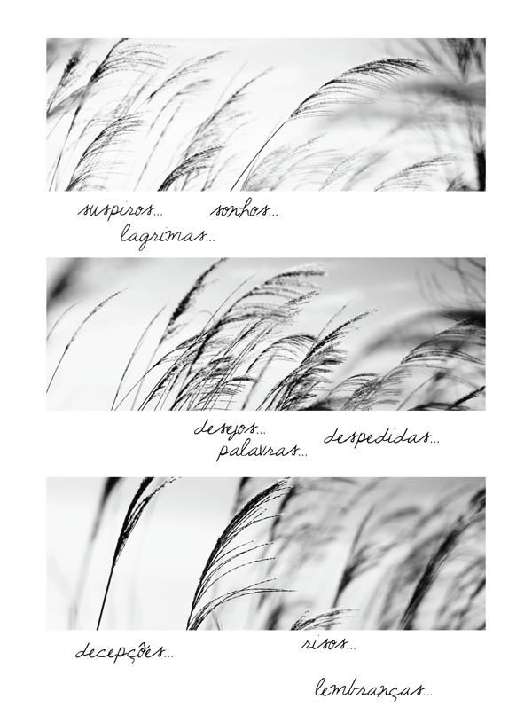 o_vento_02