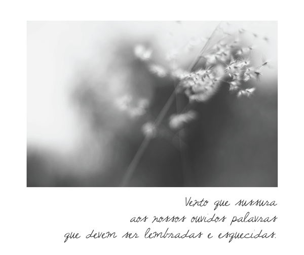 o_vento_05